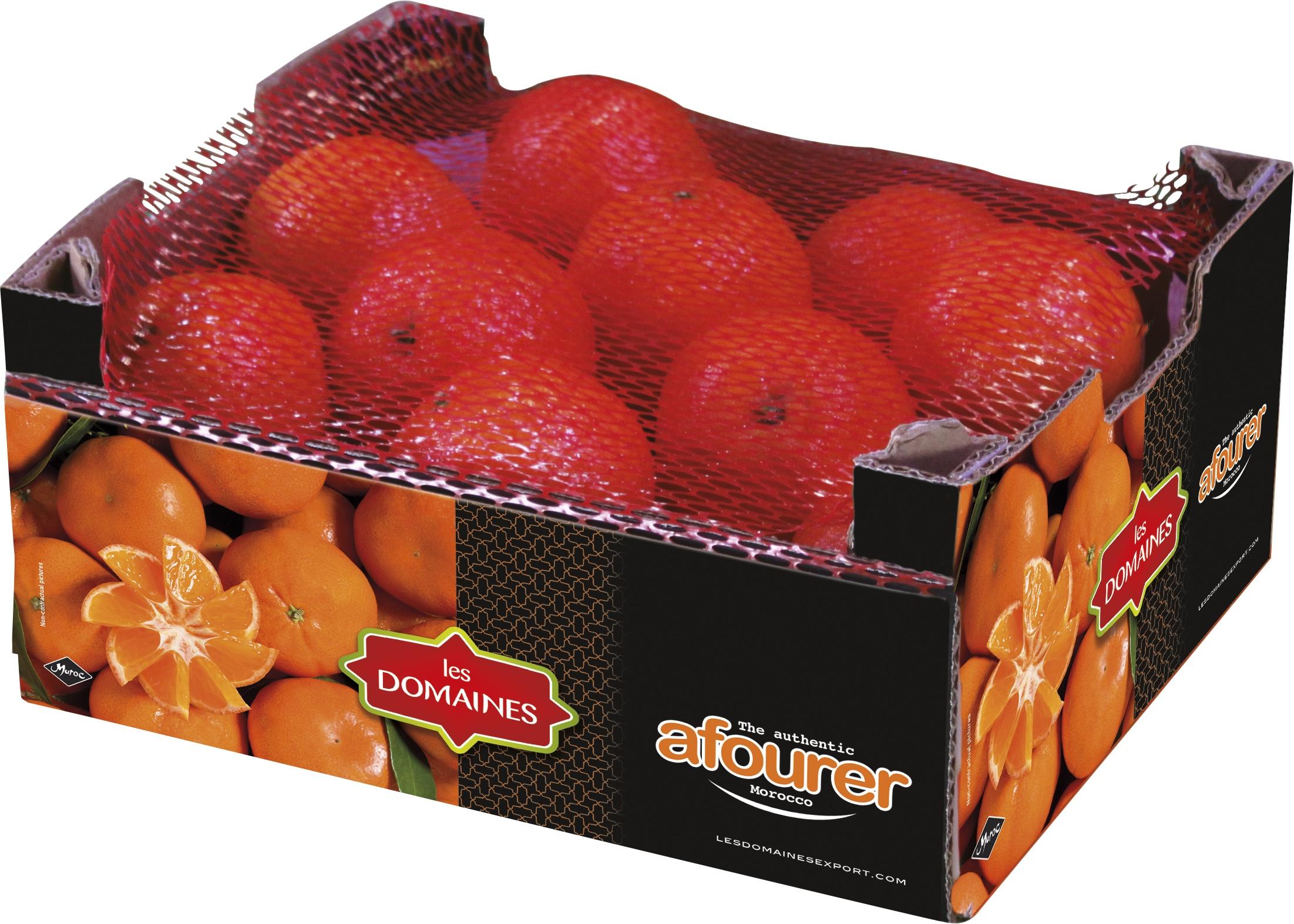 Mandarine Afourer