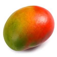 Mangue Import