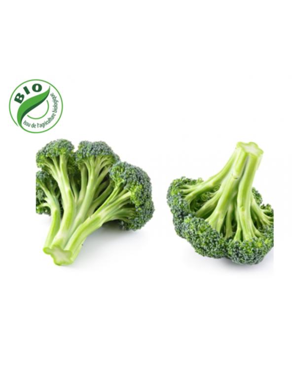 Chou brocoli